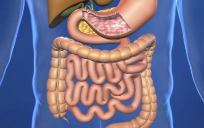 Chirurgie digestive et viscérale